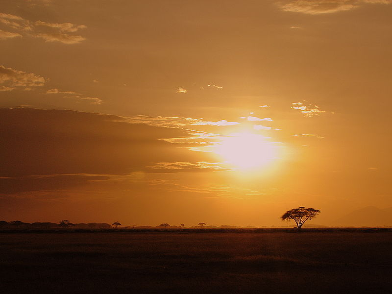 800px-Sunset_in_Amboseli