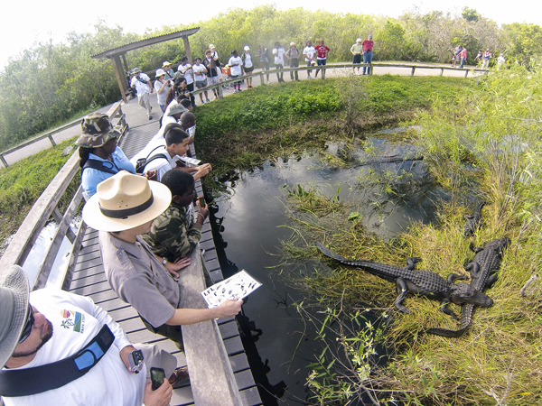 Everglades-National-Park-Parque-Nacional