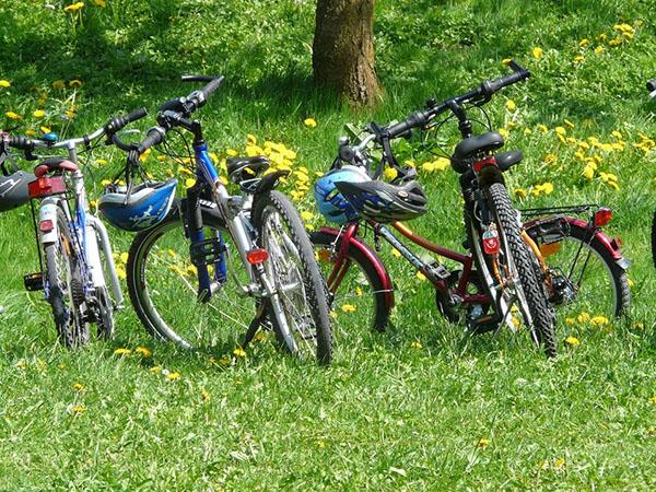 ruta bicicleta grupo familia.jpg