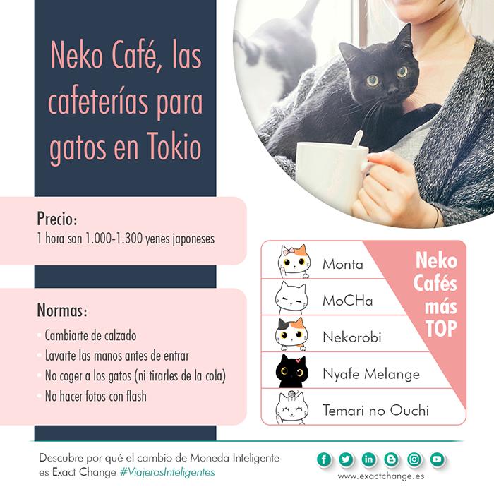 infografia-neko-cafe-cafeterias-gatos-tokio-famosas-exact-change